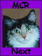 Maine Chance Maine Coon Cats Home Page